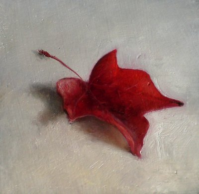 Still life with autumn leaf